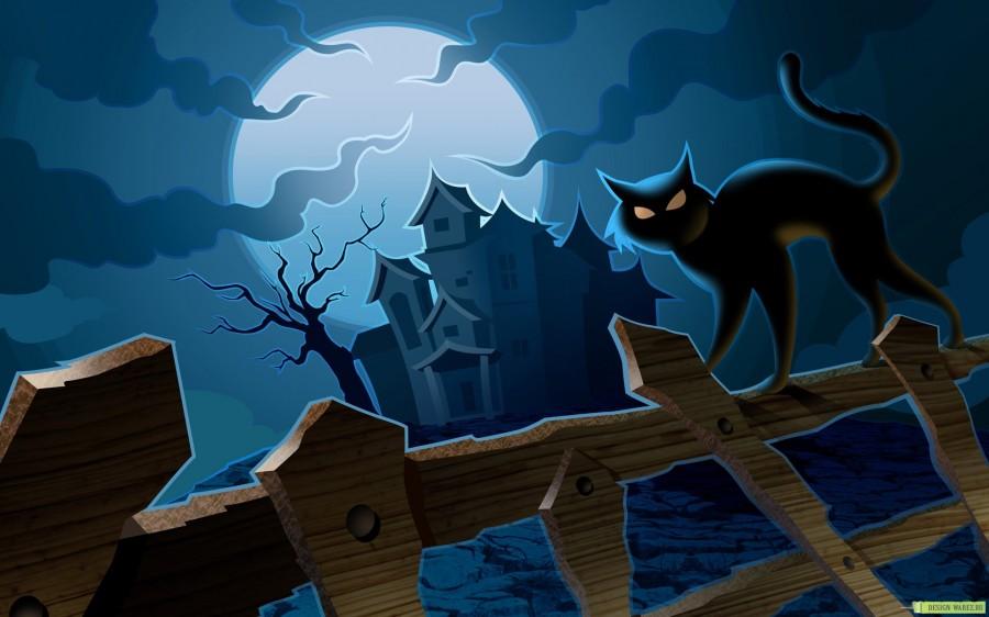 Čierna blbecek mačička
